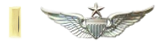 Second Lieutenant Unit Training Officer Rated Senior Aviator