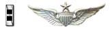 Chief Warrant Officer 2 Rated Senior Aviator