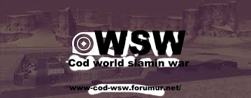 CoD-WsW