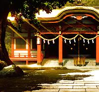 Temple Hanoki