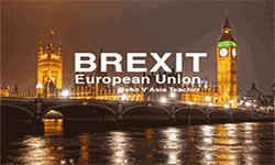 Why the change of Brexit happened