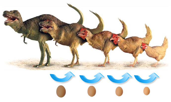 dinosa10.png