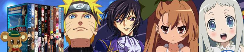 Anime Custom Covers