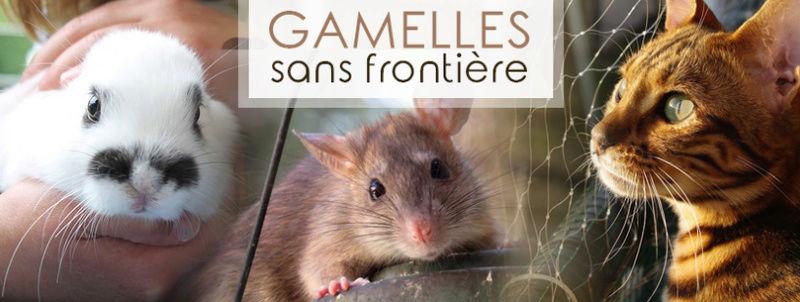 GAMELLES SANS FRONTIERE